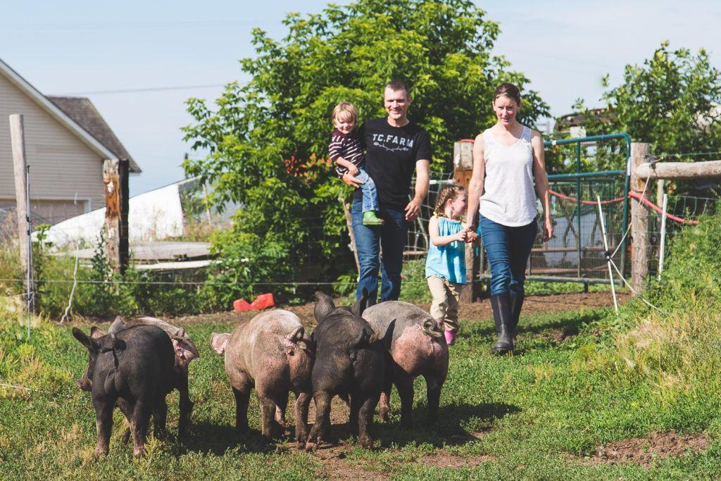 Pasture Raised Pork at TC Farm