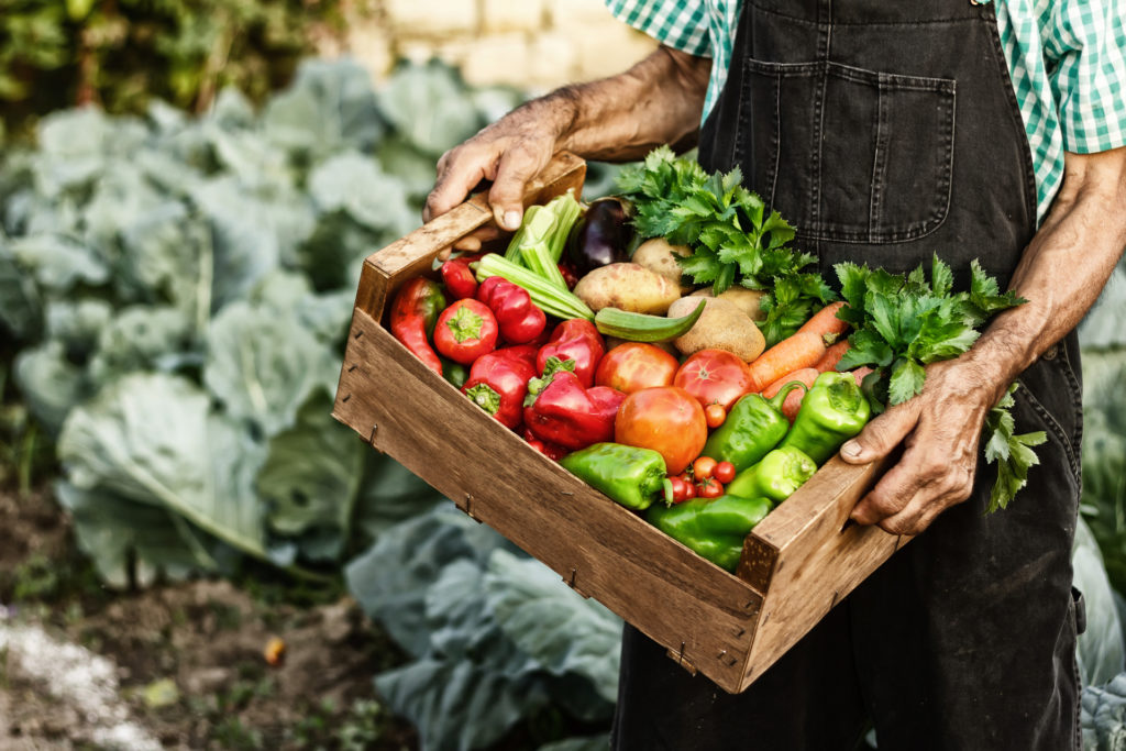 Organic Produce from Lakewinds