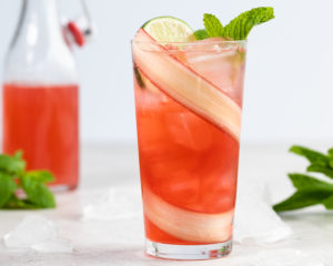 Rhubarb Mint Shrub Sparkling Beverage
