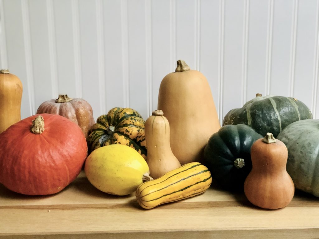 Image for Winter Squash 101