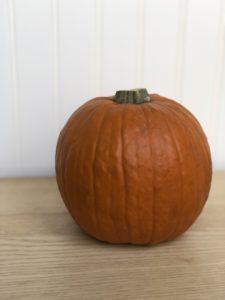Pumpkin Pie Squash