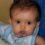 Baby Food Update