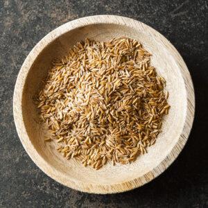 a bowl of Kernza grains